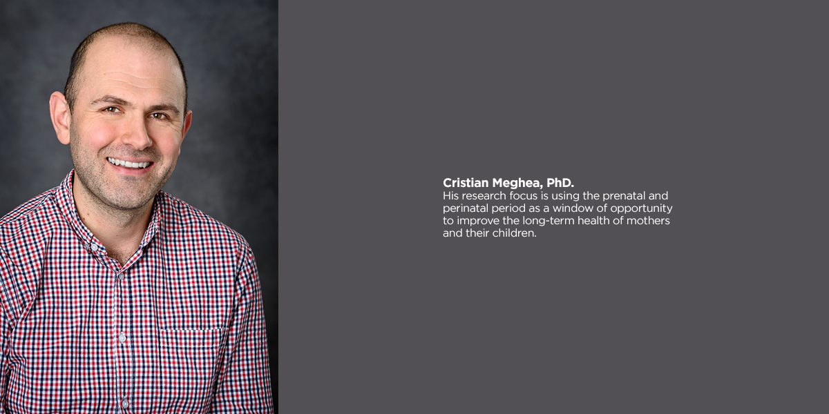 Cristian Meghea, PhD