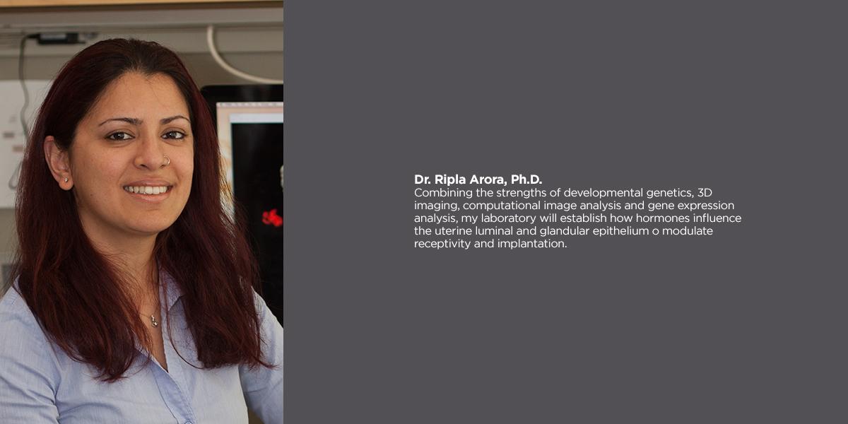 Ripla Arora, PhD