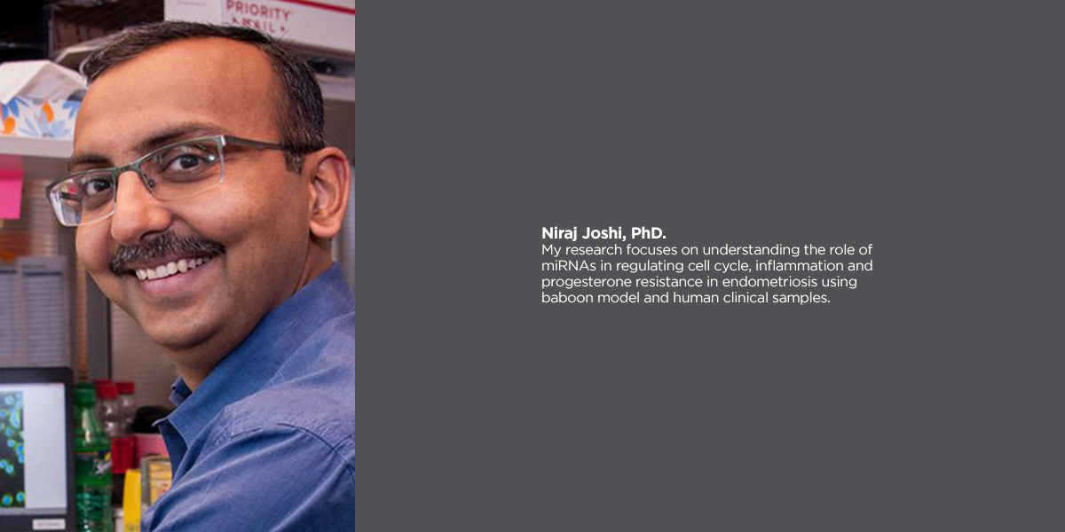 Niraj Joshi, Ph.D.