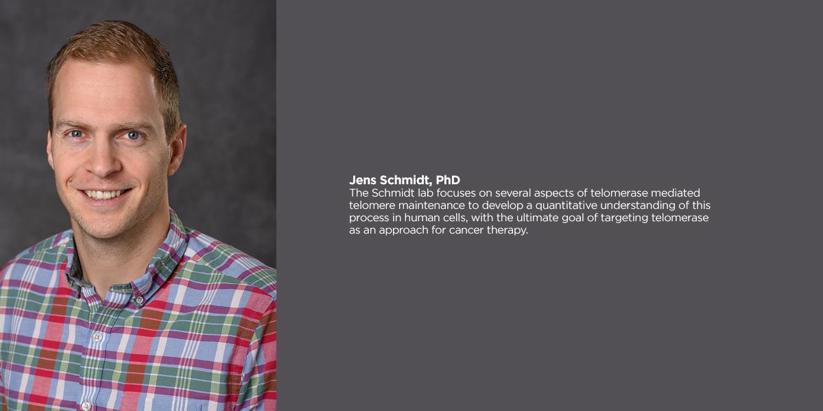 Jens Schmidt, PHD